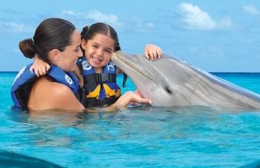 nado-con-delfines