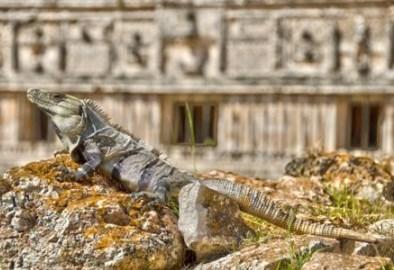 explorando-cultura-maya